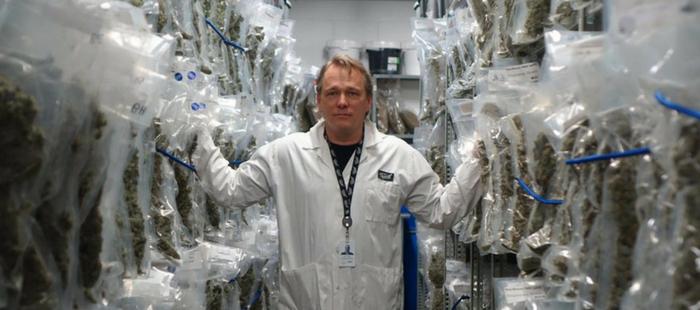 Bruce Linton Cannabis
