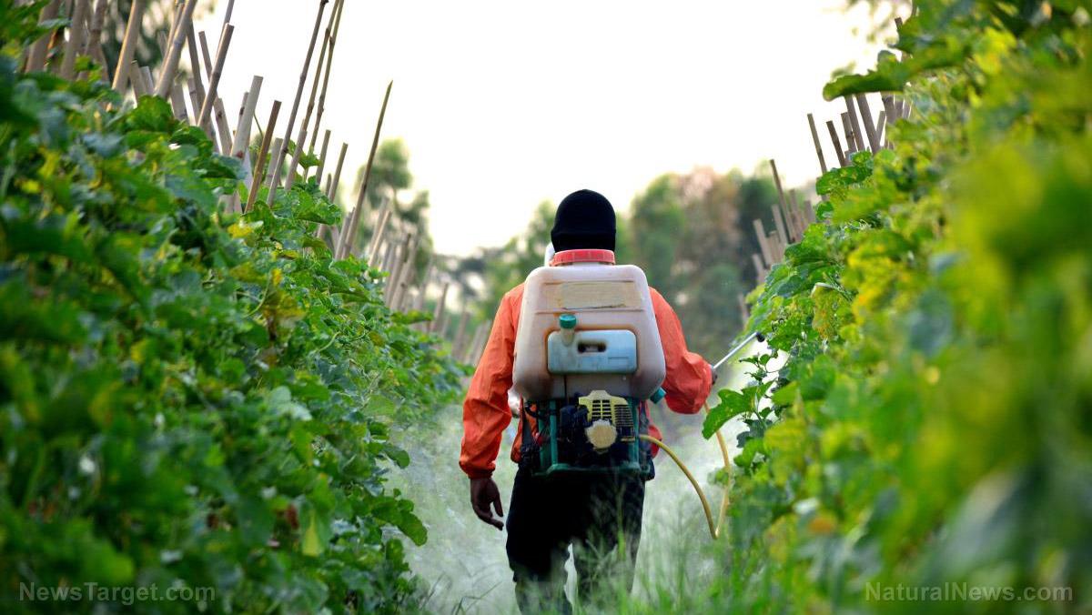 Biopesticides Market Insights