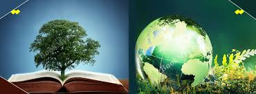 Environmental Research Papers